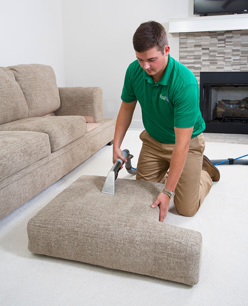 Ray's Chem-Dry professional upholstery cleaning