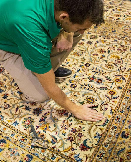 Professional Area and Oriental Rug Cleaning by Ray's Chem-Dry